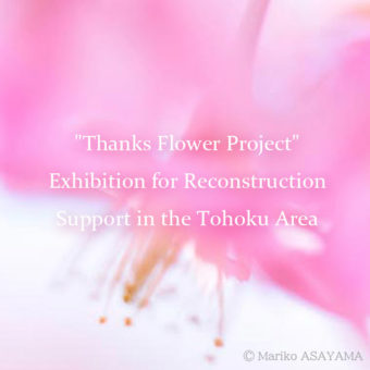 """Thanks Flower Project"" Exhibition for Reconstruction Support in the Tohoku Area"